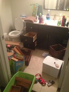 Bathroom craziness